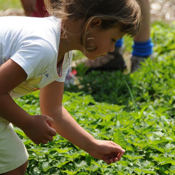 bambina chinata sull'erba